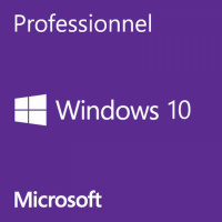 windows_10_professionnel